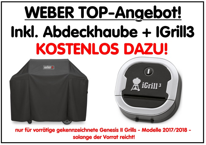 Weber-Zugabe-Genesis-II-2018-blog