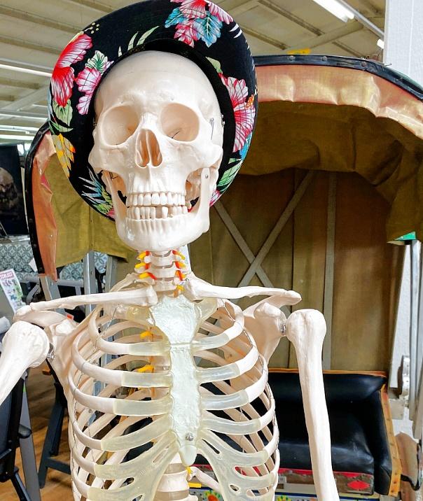 Halloween-Kost-m-Kinder-Erwachsene-Dekorationen-Skelett